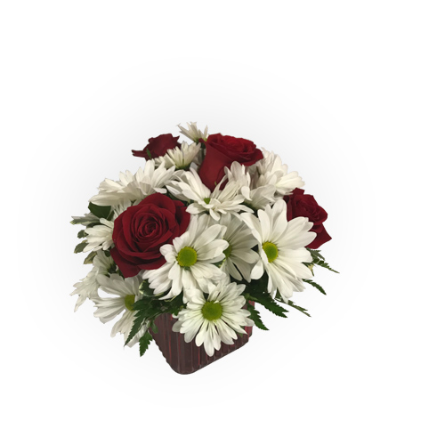 A Wylie Flower Shop exclusive design. A pave` (compacted) arrangement of white daisies and red spray roses with decorative leather leaf in a clear cube vase embellished with red rose ribbon and designed to be viewed from any angle.<br/><br/>